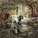 DARK FOREST cover art