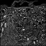 Ritual Chamber cover art